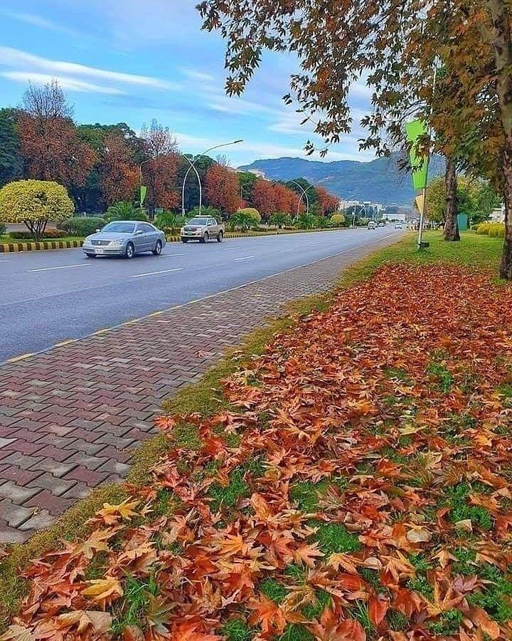 #Islamabad  #capitalIslamabad  #VisitIslamabad  #Greenislamabad #GreenCapitalIslamabad