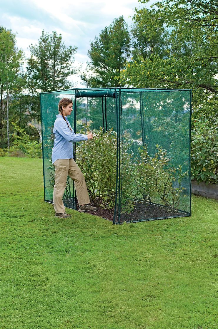 Crop Cage 4 ft x 8 ft x 6 ft Tall Gardener's Supply