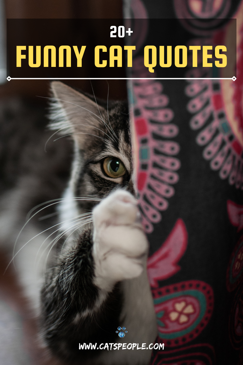 20 Funny Cat Quotes In 2021 Cat Quotes Cat Quotes Funny Funny Cats