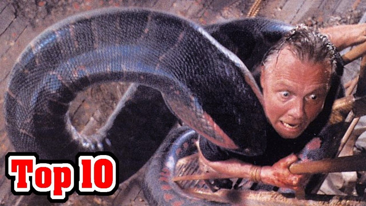 Top 10 Most DANGEROUS ANIMALS In AUSTRALIA (With images