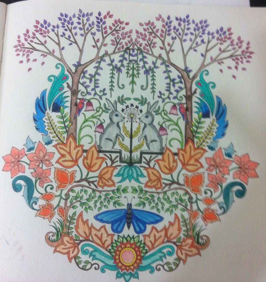 Johanna Basford Enchanted Coloring Filing Forest Maryland Forests Print Pages Garden Tips