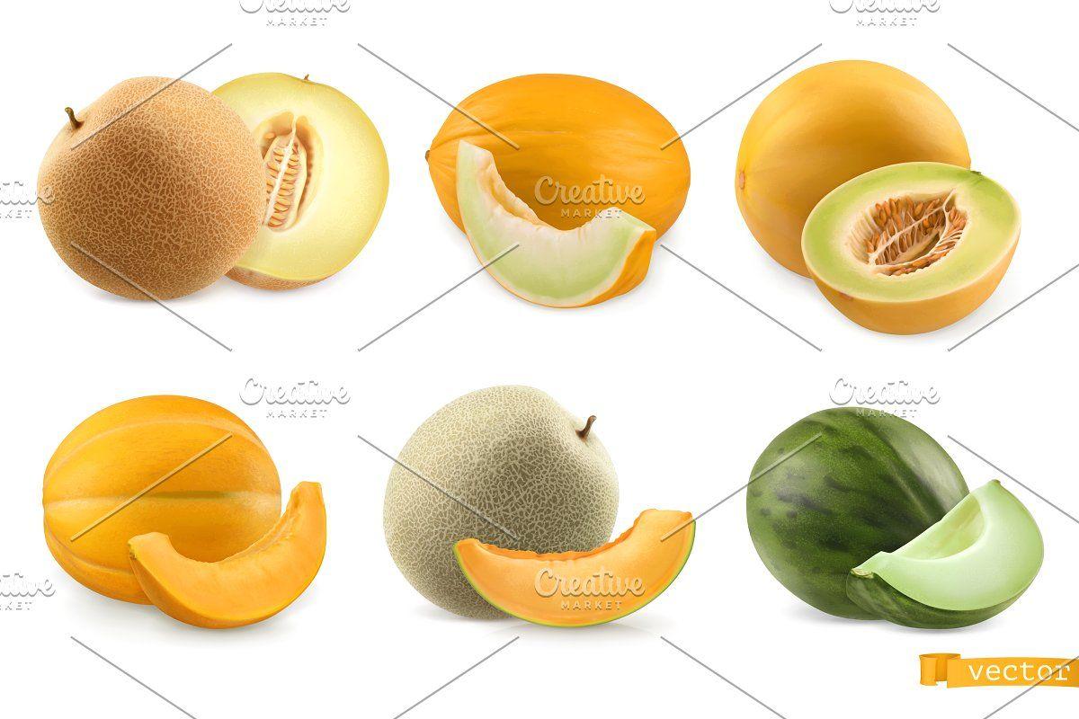 Cantaloupe Sweet Melon Vector Set Melon Icon Set Vector Fruits Drawing