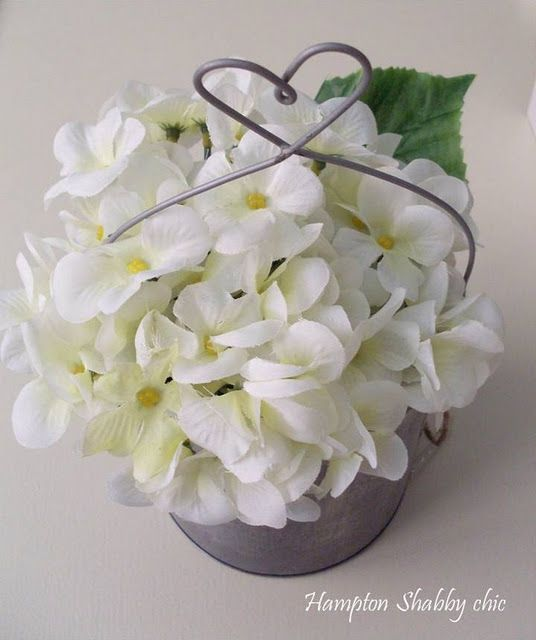 White Violet The Flower Of The Fraternity Chosen By Founder Ruby