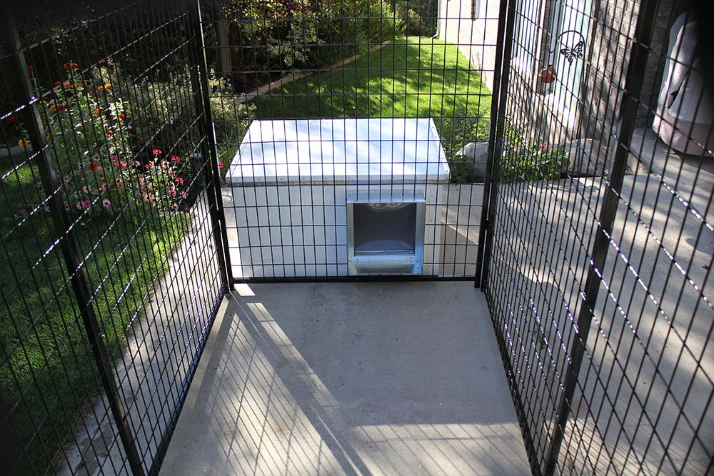 Our Inexpensive Dog House And Kennel Run With Cover Combination