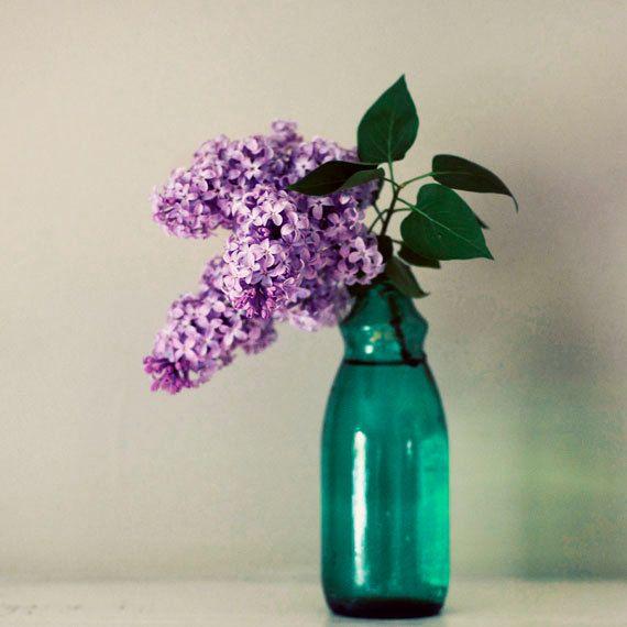 Still Life Photograph Lilac 5x5 Print Flower Photography Purple Teal Green Vase Simple Minimal Fine Art Photo Pintura Em Tela Pinturas Estrela