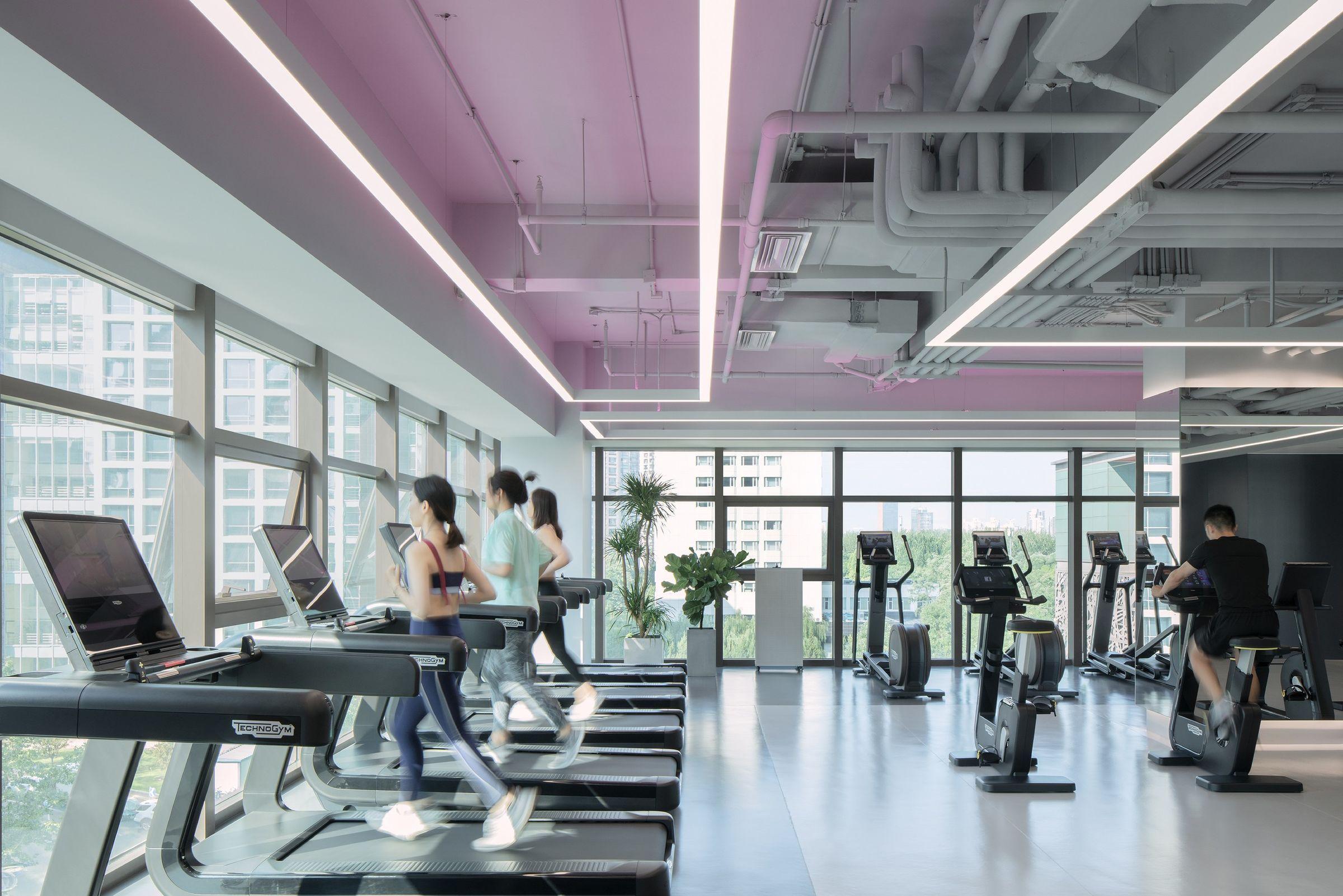 Ujoy Prime Fitness Gym Anyscale Archello Gym Workouts Gym Fitness