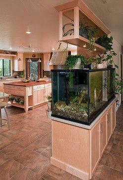 Fish Tank Room Break transitional My Future House Pinterest