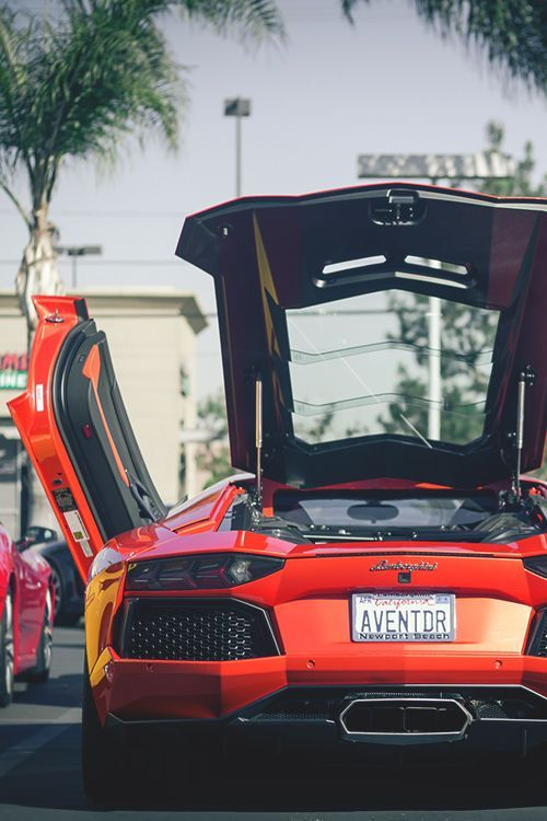 Check Out This Awesome Lamborghini Aventador!! This Guy Knows How To  Showoff In Style