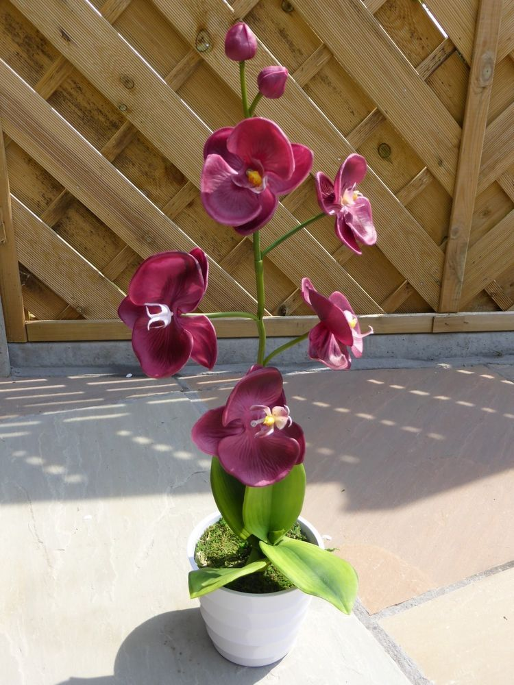 Artificial led burgundy orchid plant in white ceramic pot