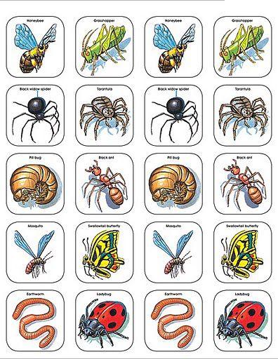 Imagenes animales para recortar-Imagenes para imprimir.Dibujos para ...