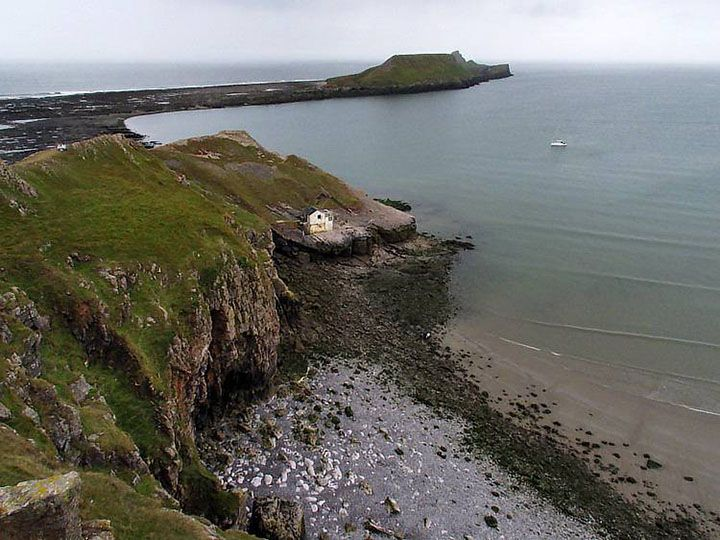 Image result for worms head