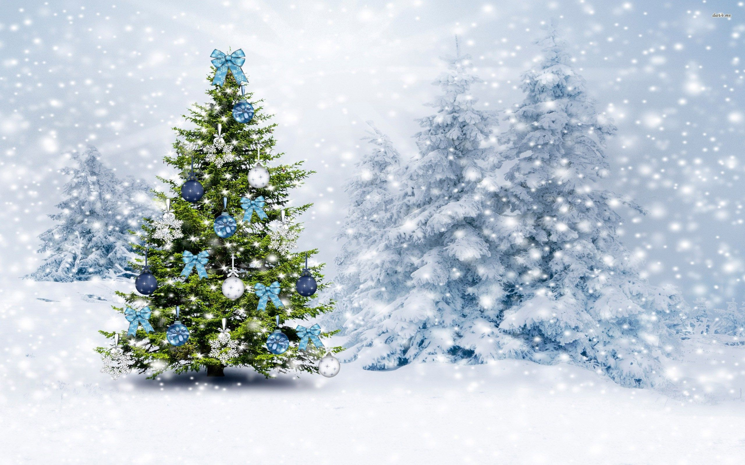 Christmas Tree In The Snowy Forest Hd Wallpaper Christmas Tree Wallpaper Christmas Tree Background Christmas Tree Photography
