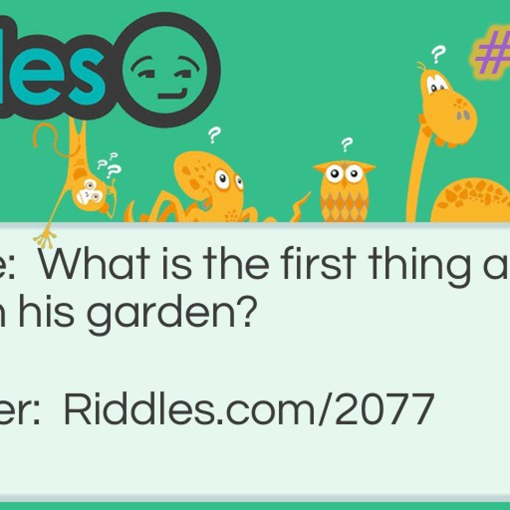 What Is The First Thing A Gardener Sets In A Garden