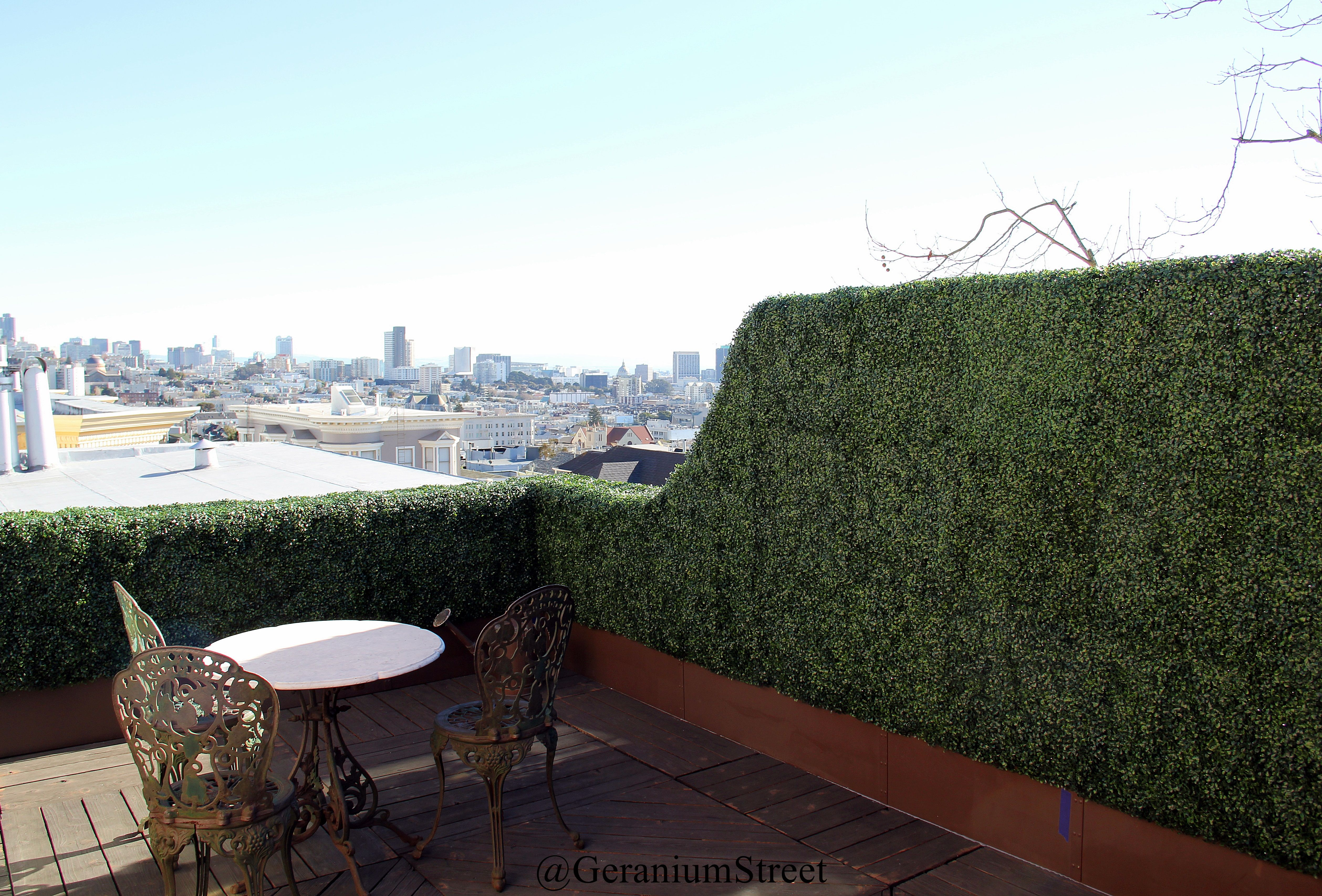 custom built rooftop artificial boxwood hedge overlooking on interior using artificial boxwood panels with flowers id=81585