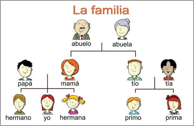 family tree examples in spanish Spanish Pinterest Spanish - family tree example