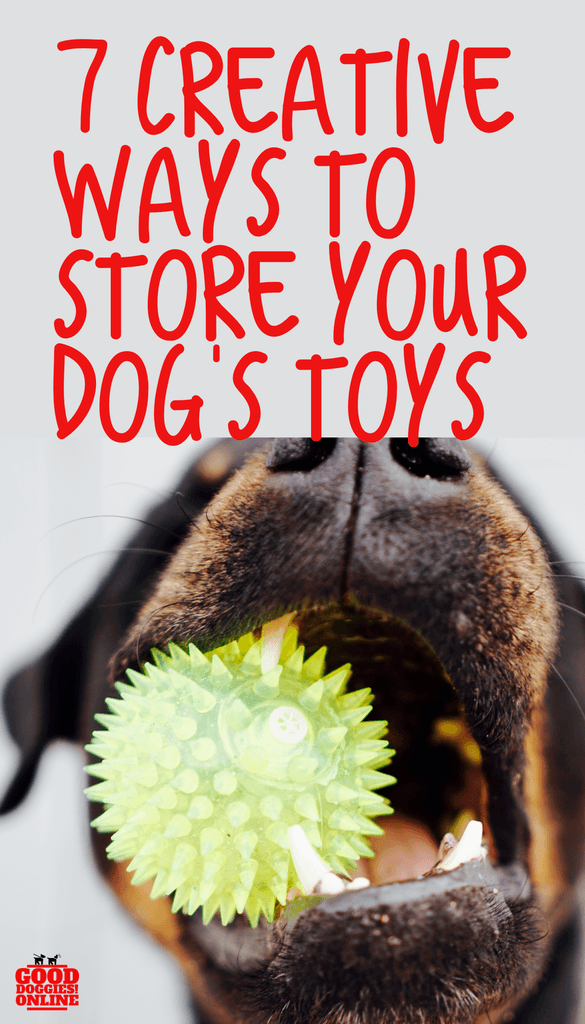 7 Creative Ways To Store Your Dog S Toys With Images Dog Toy Storage Dog Toys Living With Dogs