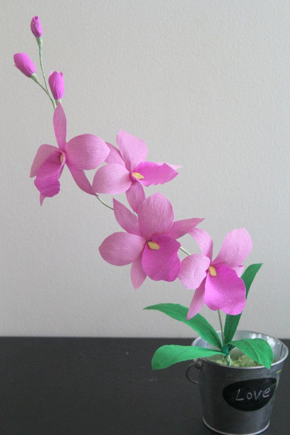 Paper orchid crepe cattleya