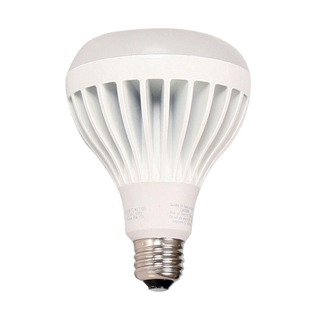 41++ Led flood light bulbs home depot information