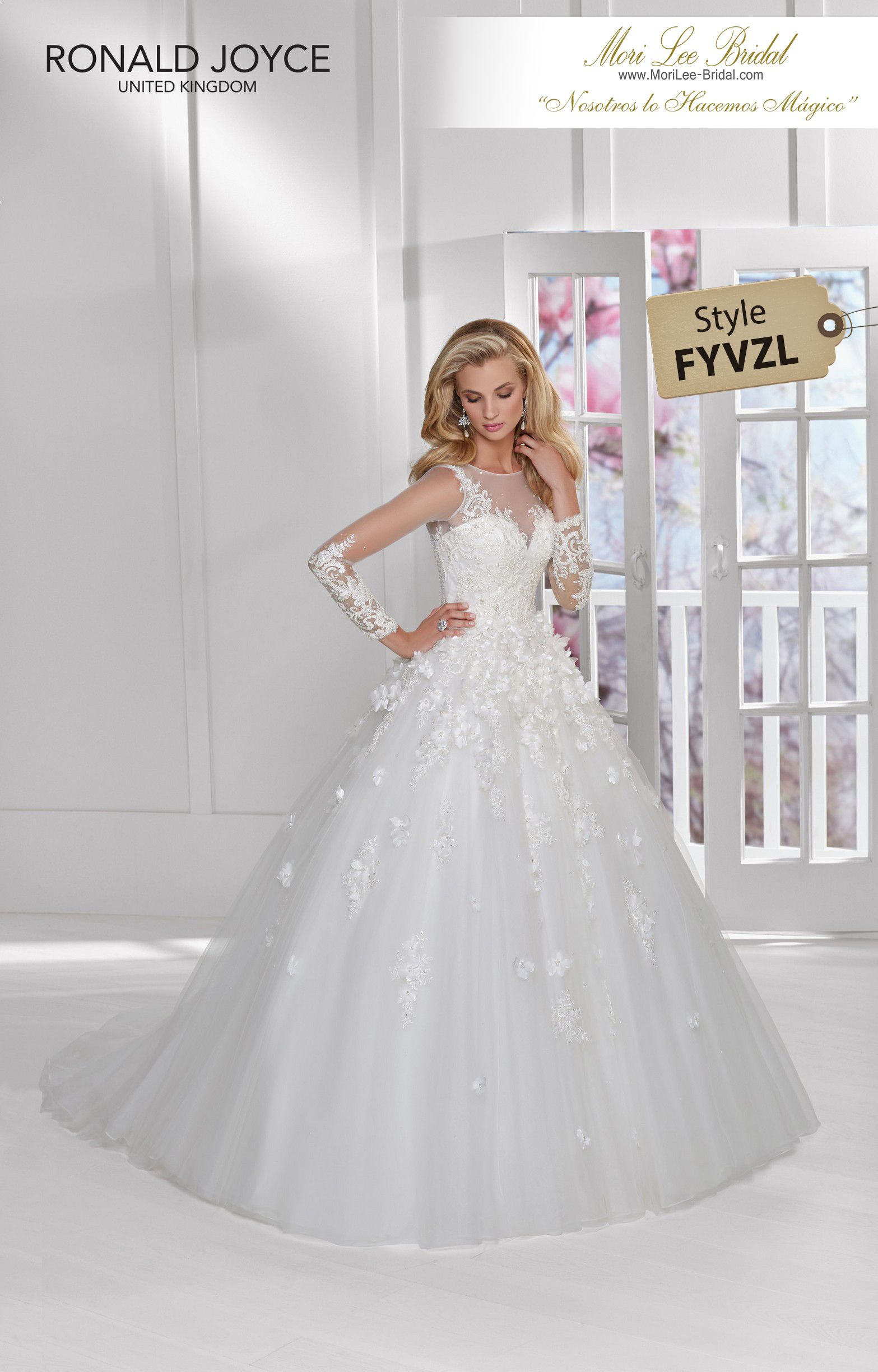 Fyvzl spring pinterest lace applique ball gowns and gowns