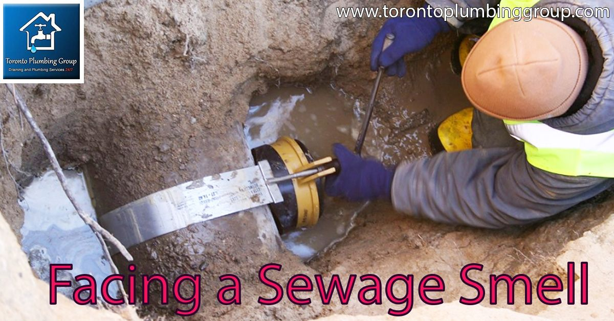 Affordable And Quality Plumbing Services In 2019 Toronto Plumbing