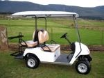 $115 a day. Our four seat golf cart is perfect for transporting guests at wedding, concerts, or any function where point A and point B are spread over a large distance!