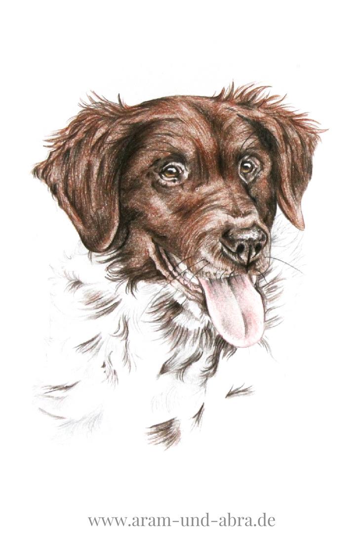 hund malen lassen  auftragsarbeiten bei aram und abra