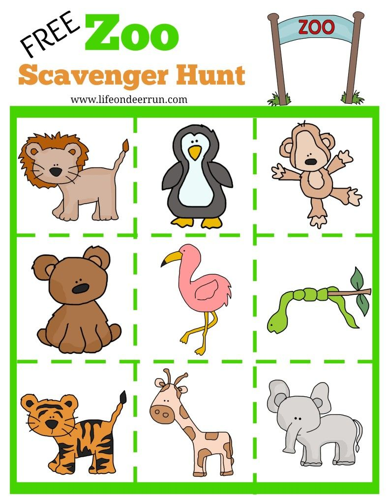 Zoo Scavenger Hunt Printable Zoo scavenger hunts, Zoo