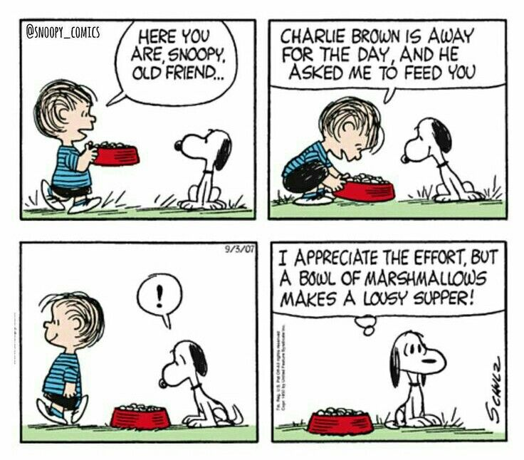 #thepeanuts #pnts #schulz #snoopy #linus #supper #marshmallows