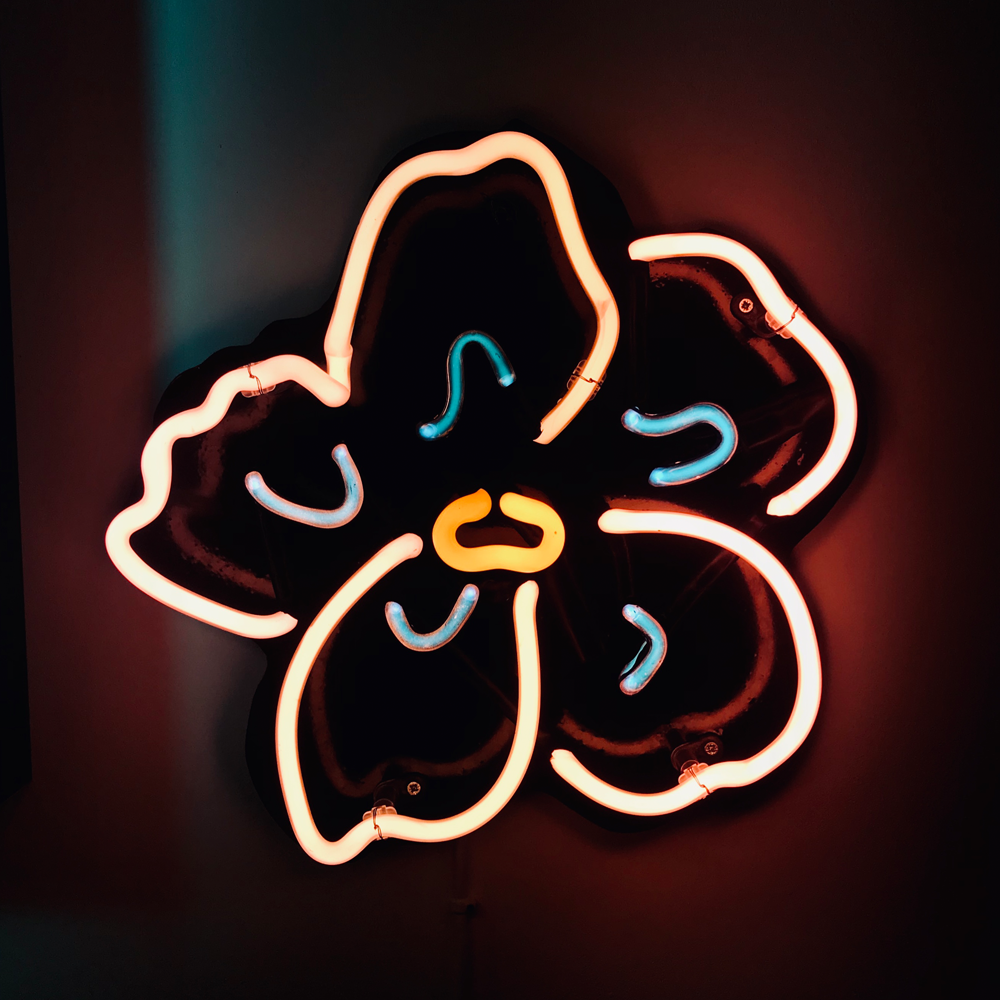 Bespoke Neon Sign Neon Design Neon Signs Sign Maker