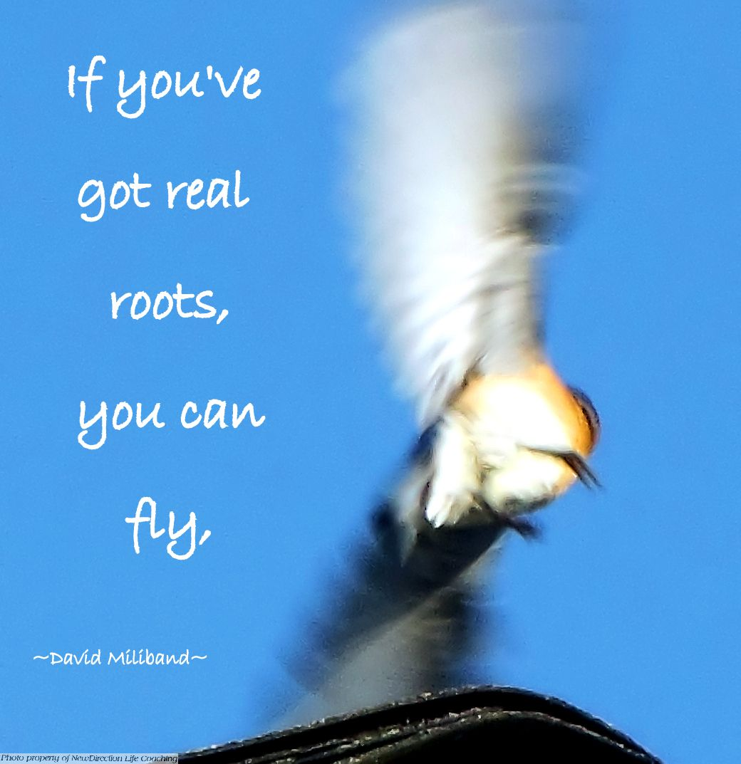 Only when you're firmly grounded can you confidenty fly.