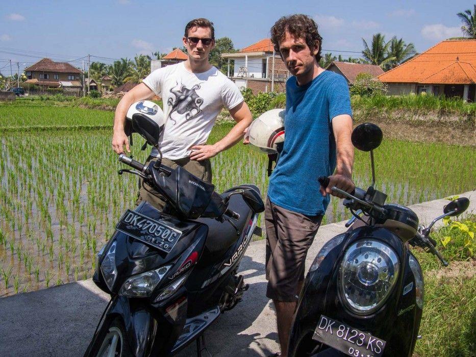 A Digital Nomad's Guide to Living in Ubud, Bali Digital