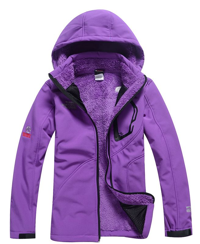 Authentic The North Face Women's soft Summit Soft Shell Jacket Purple