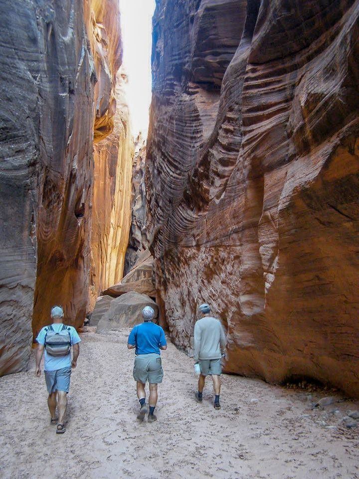 Guided Canoe And Hiking Trips In: Specialties: Four Season Guides