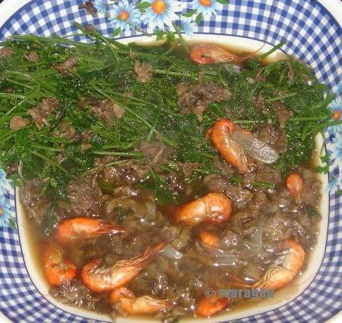 Kuditdit or kudet (bracket fungi, tree ear fungus) and wild ampalaya (paria a balang/paria ti bakir)shoots with kinirog nga udang (fried freshwater shrimps).