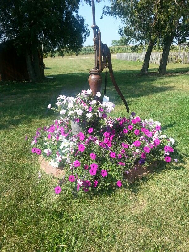 Flowers Around The Old Well Pump Old Water Pumps Beautiful Gardens Hand Water Pump