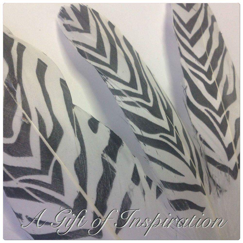 Black White Zebra Print Goose Feathers 15 20cm Diy Craft Millinery