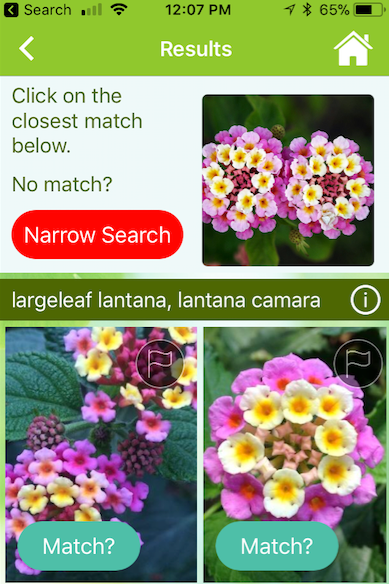 The 7 Best Gardening Apps You Need Right Now in 2020 ...