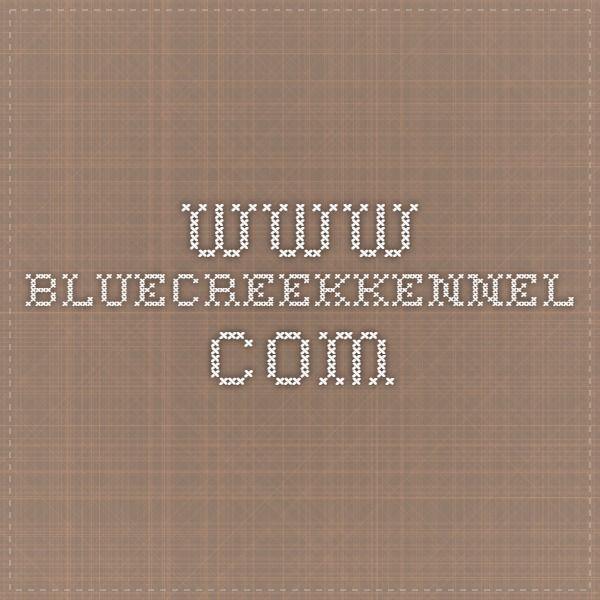 www.bluecreekkennel.com