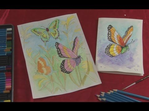 Art Lesson How To Paint Butterflies With Watercolour Pencils