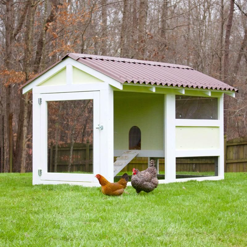 Exceptionnel Backyard Chicken Product: Chicken Coops   The Playhouse Coop Kit (up To 8  Chickens