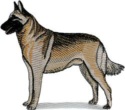 Machine Embroidery Design Belgian Malinois