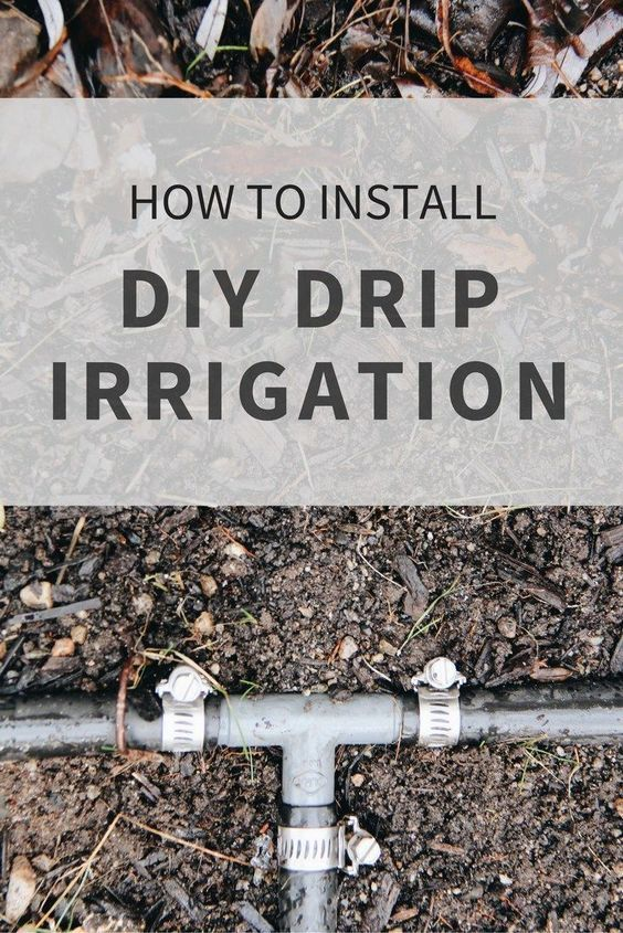 DIY Drip Irrigation Systems: How to Water Your Garden Efficiently ...