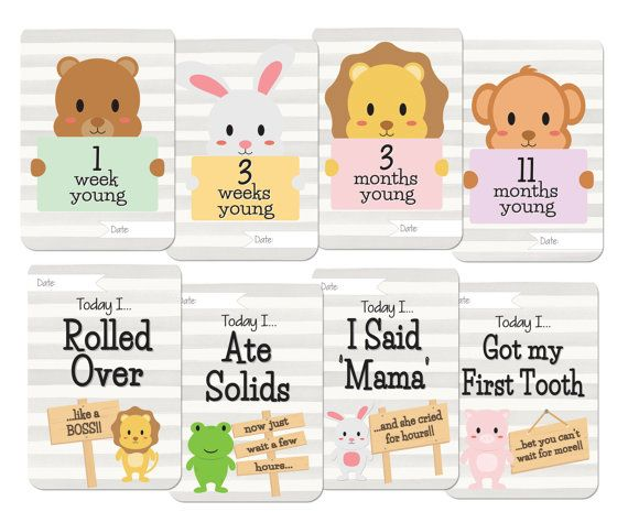 printables baby animals milestone card set