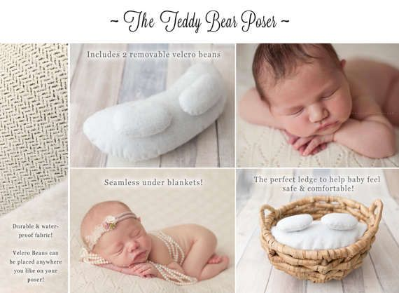Teddy bear newborn poser newborn posing bean poser posing
