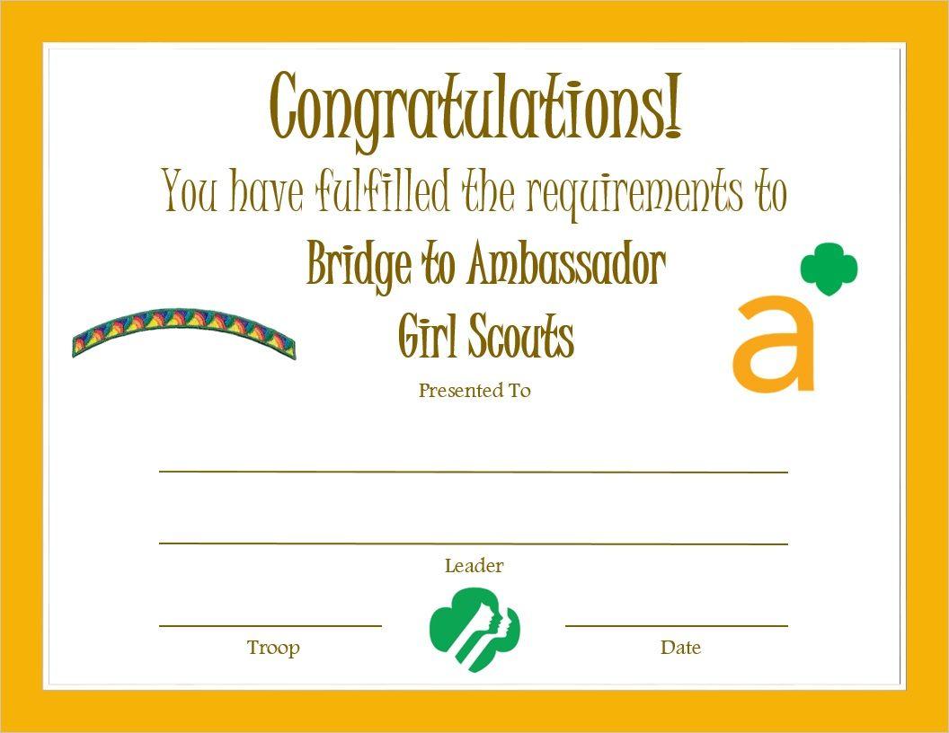 Senior Bridge To Ambassador Certificate