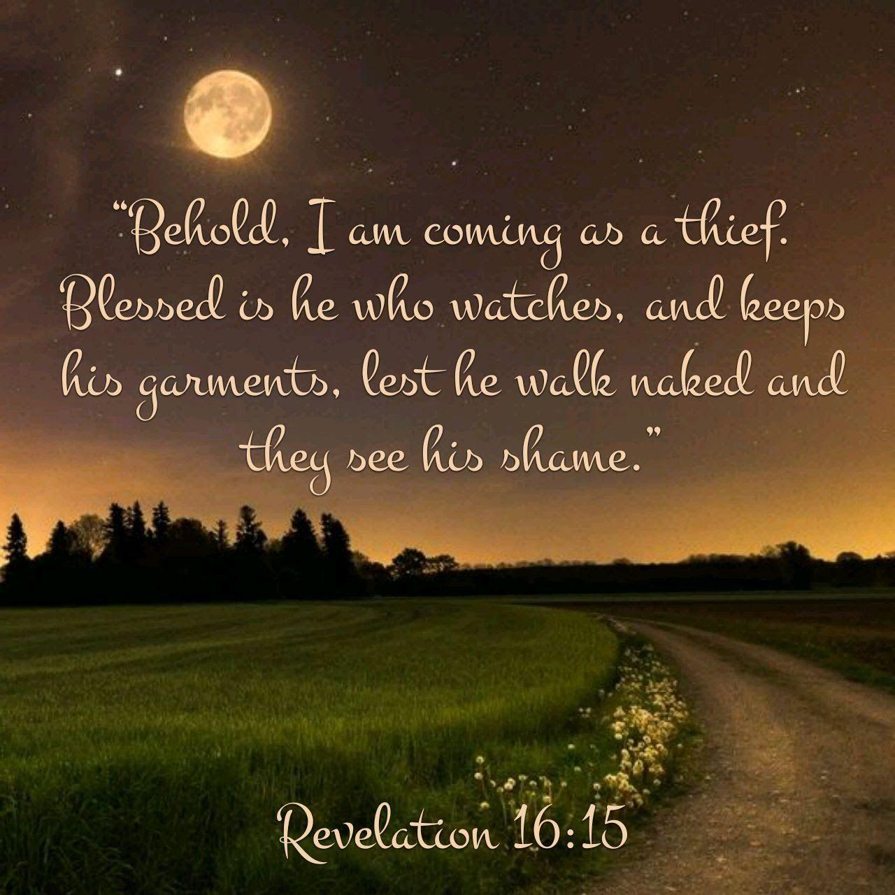 Revelation 1615 Biblical verses, Bible apps, Youversion