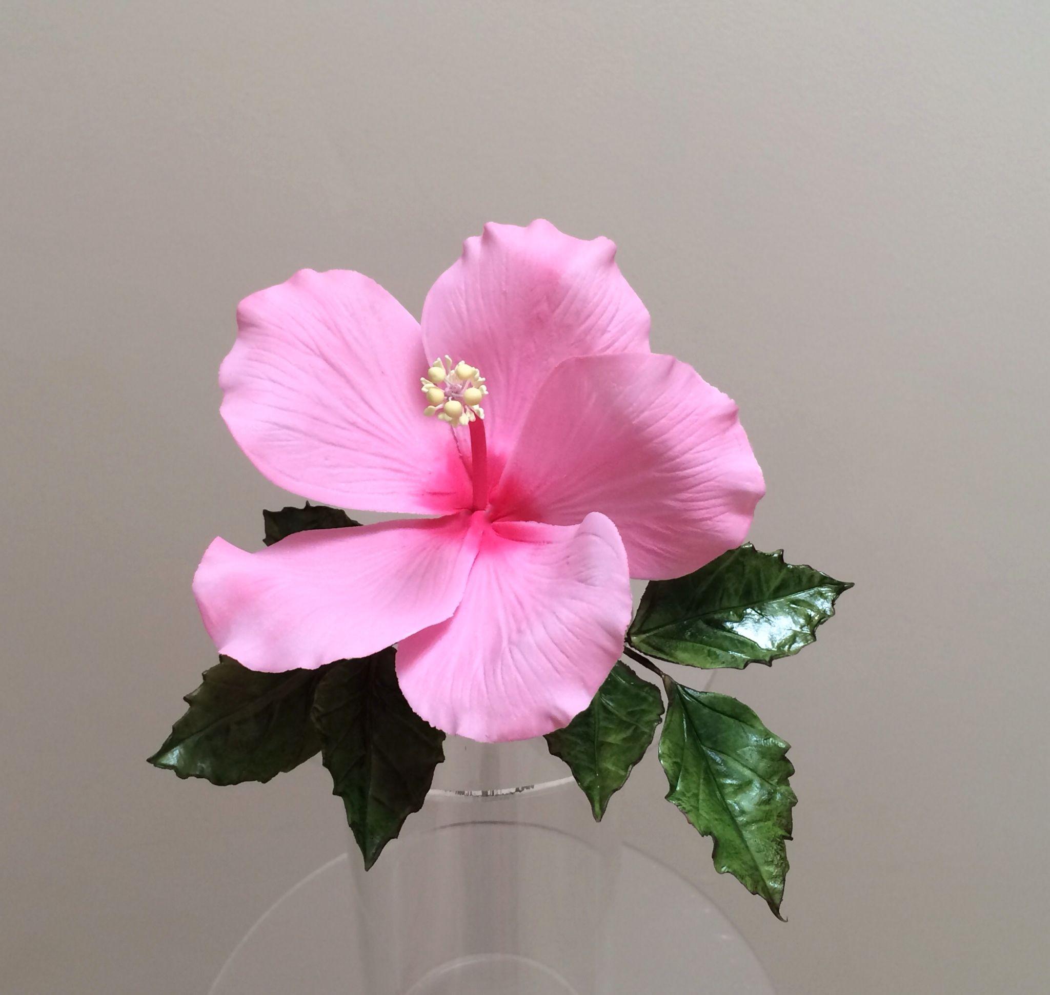 Gum Paste Hibiscus Creaciones Y Romance Pinterest Gum Paste