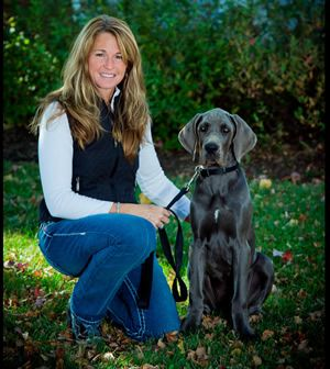 About Us Great Dane Breeders Great Dane Puppy Puppies