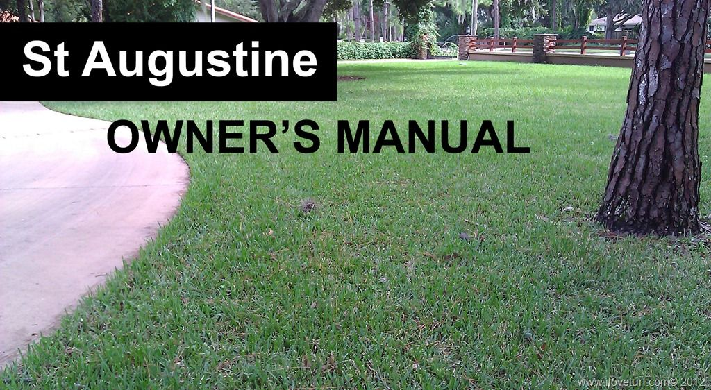 St Augustine Owner's Manual Healthy grass, St. augustine