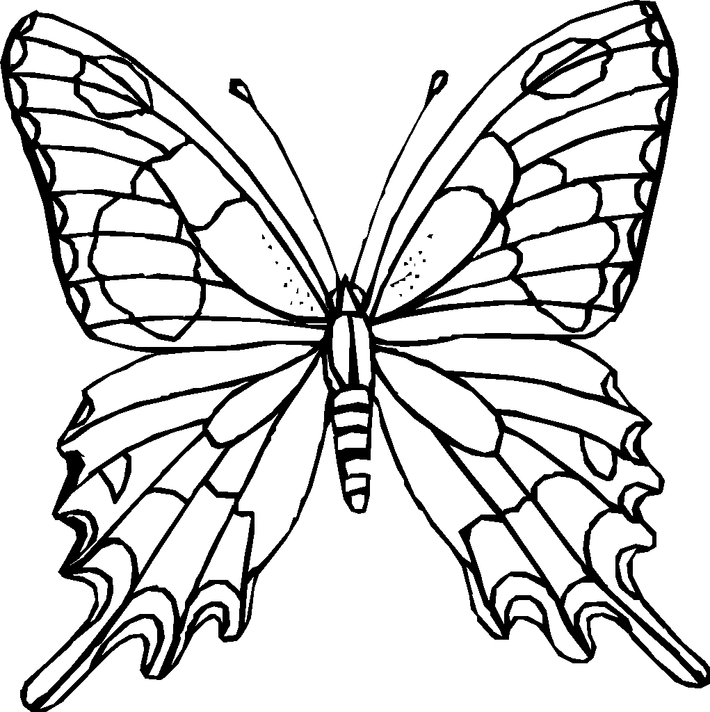 Free butterfly coloring pages - Difficult Coloring Pages For Adults Coloring Pages Com Butterfly Coloring Pages To Print